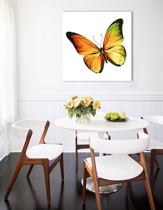 Obraz Motýľ na zrkadle Mirrora 01 - 50x50 cm (Obrazy Mirrora)