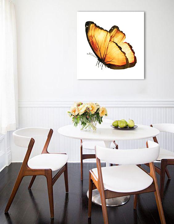 Obraz Motýľ na zrkadle Mirrora 02 - 50x50 cm (Obrazy Mirrora)