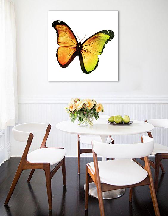 Obraz Motýľ na zrkadle Mirrora 03 - 50x50 cm (Obrazy Mirrora)