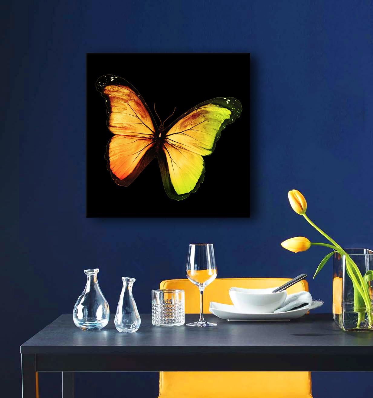Obraz Motýľ 3D na zrkadle Mirrora 06 - 50x50 cm (Obrazy Mirrora)