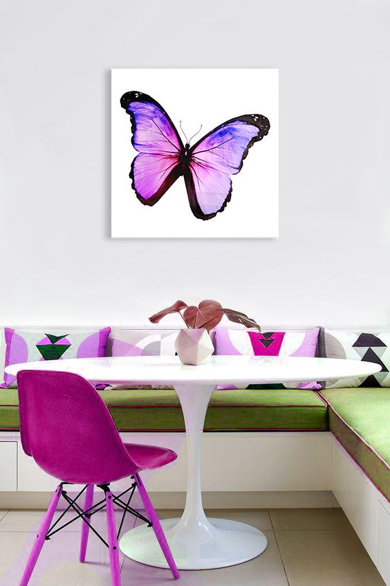 Obraz Fialový Motýľ na zrkadle Mirrora 09 - 50x50 cm (Obrazy Mirrora)