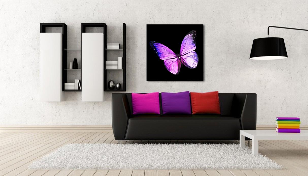 Obraz Fialový Motýľ na zrkadle Mirrora 10 - 50x50 cm (Obrazy Mirrora)