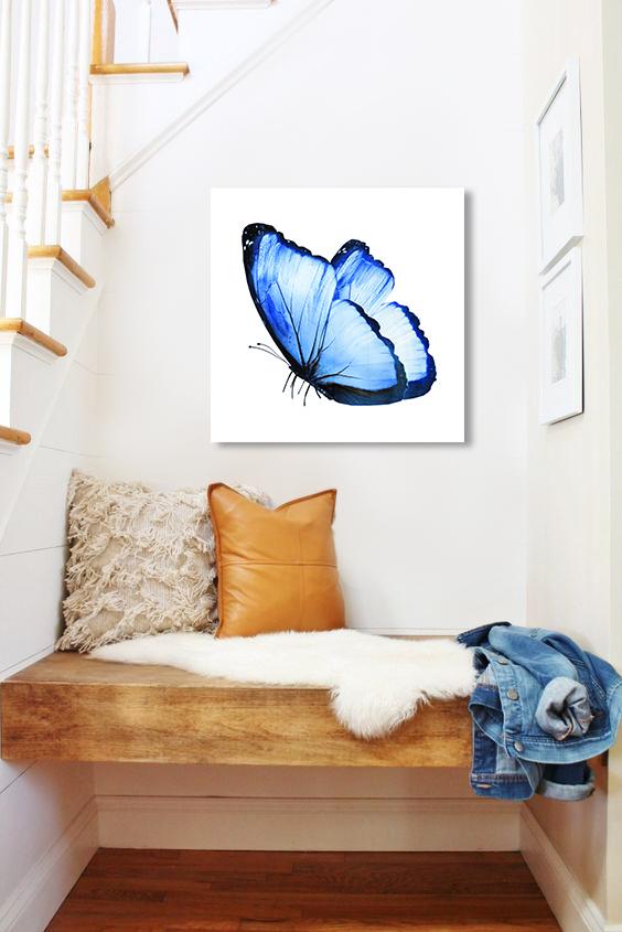 Obraz Modrý Motýľ na zrkadle Mirrora 14 - 50x50 cm (Obrazy Mirrora)