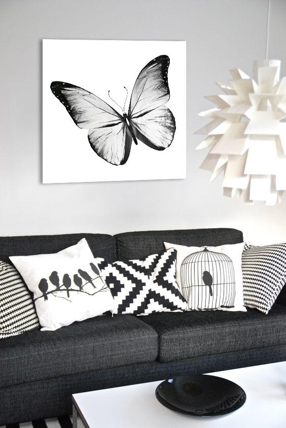 Obraz Biely Motýľ na zrkadle Mirrora 19 - 50x50 cm (Obrazy Mirrora)