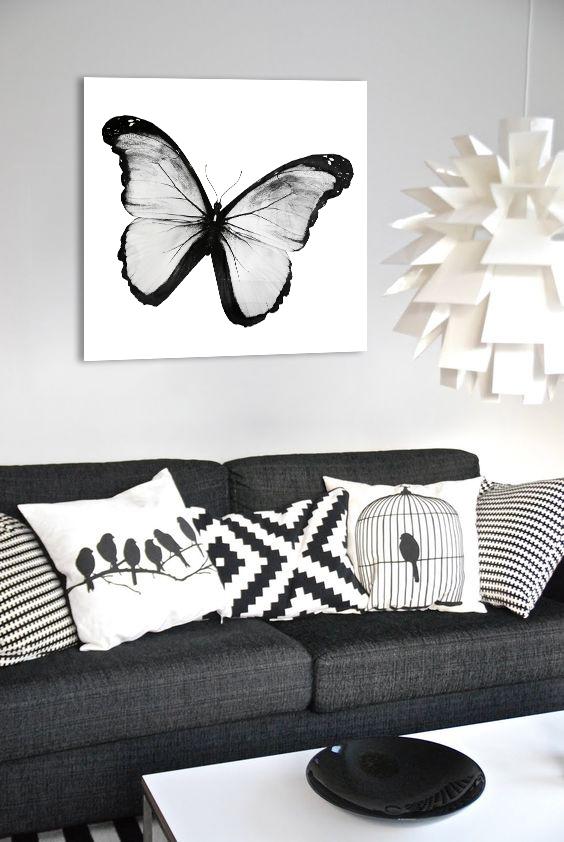 Obraz Biely Motýľ na zrkadle Mirrora 21 - 50x50 cm (Obrazy Mirrora)
