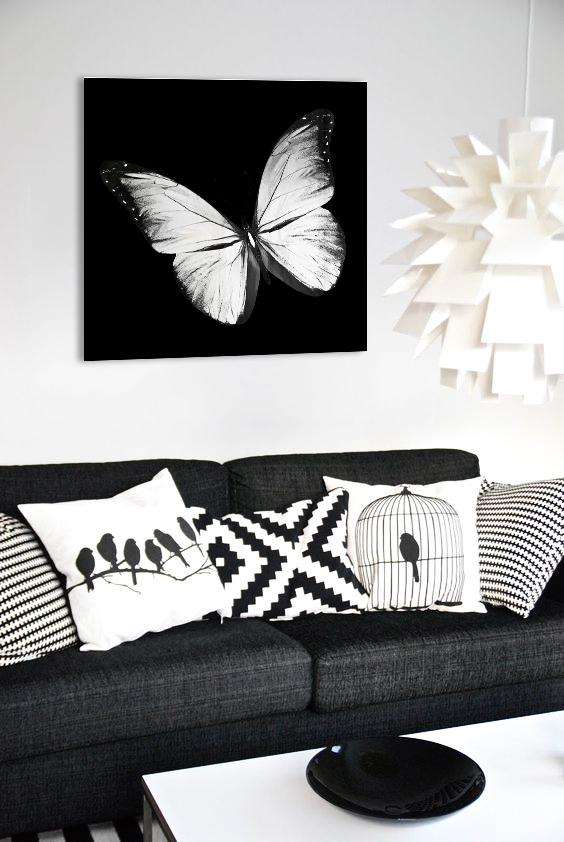 Obraz Biely Motýľ 3D na zrkadle Mirrora 22 - 50x50 cm (Obrazy Mirrora)