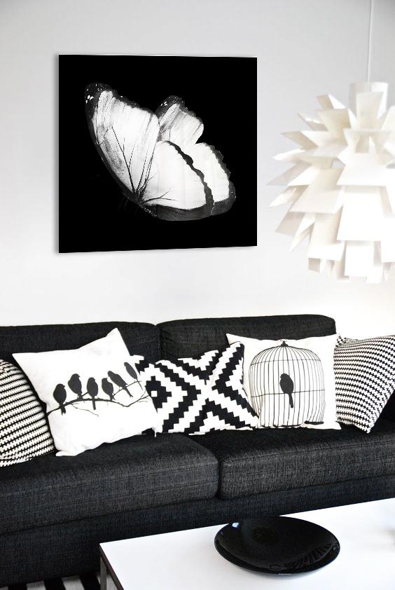 Obraz Biely Motýľ 3D na zrkadle Mirrora 23 - 50x50 cm (Obrazy Mirrora)