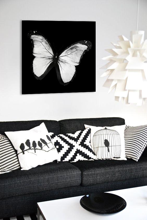 Obraz Biely Motýľ 3D na zrkadle Mirrora 24 - 50x50 cm (Obrazy Mirrora)