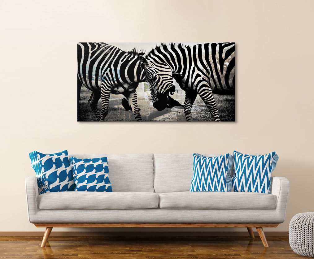 Obraz Zebra na zrkadle Mirrora 38 - 50x100 cm (Obrazy Mirrora)