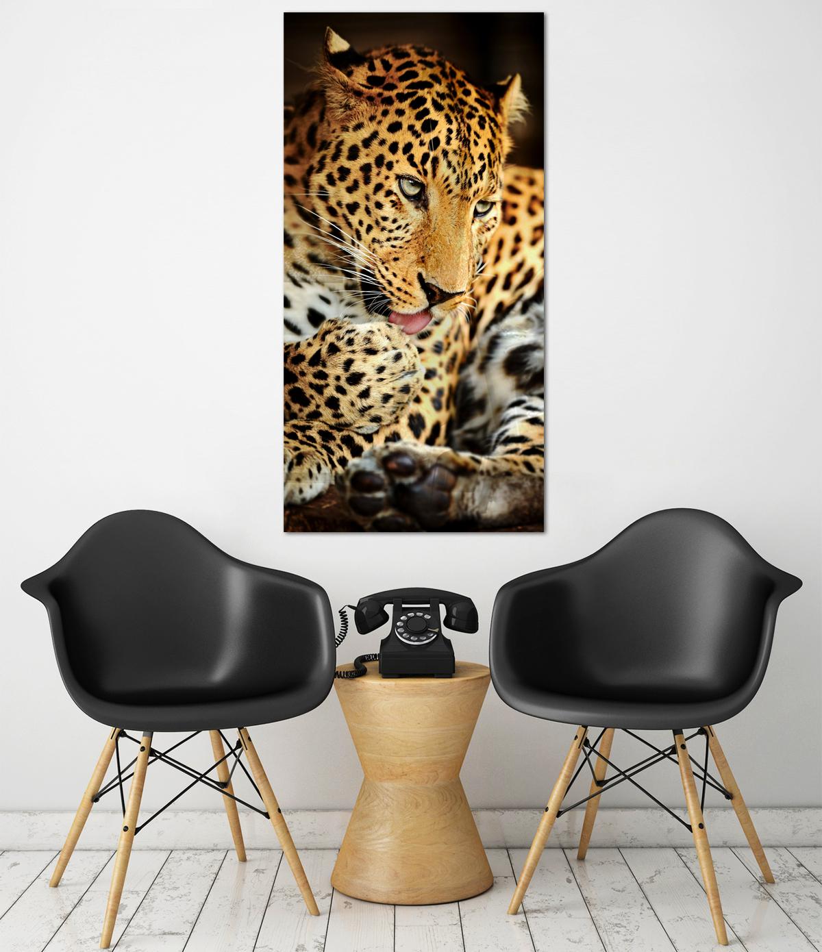 Obraz Leopard na zrkadle Mirrora 40 - 100x50 cm (Obrazy Mirrora)