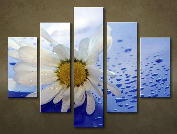 Image of Obraz na stenu 5 dielny KVETY KBI_0006_5EL (obraz na plátne)