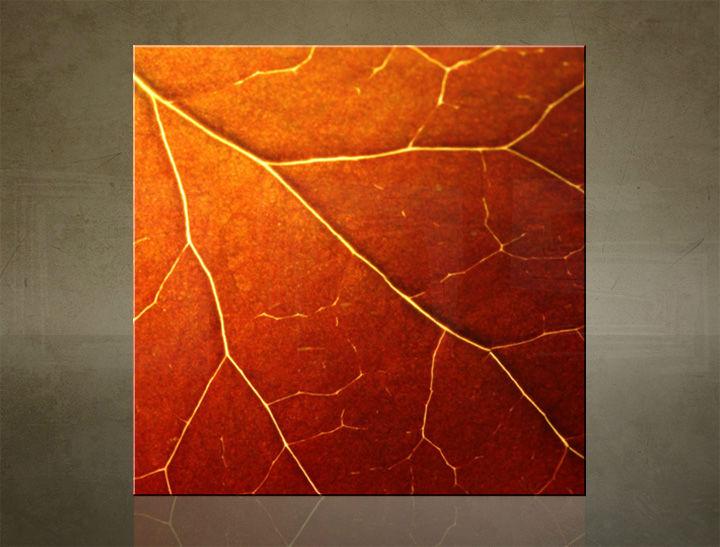 Obraz na stenu ŠTVOREC RASTLINY - AHD25832