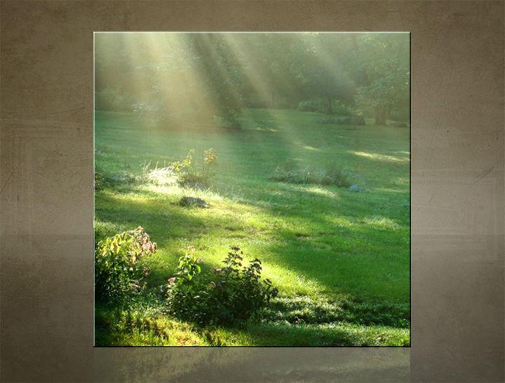 Obraz na stenu ŠTVOREC STROMY - AHD25911