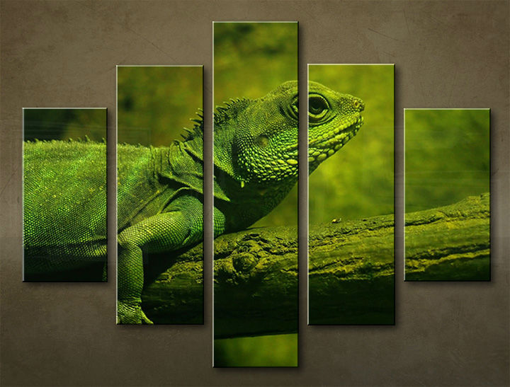 Image of Obraz na stenu 5 dielny ZVIERATÁ ZWI_0001_5EL (obraz na plátne)