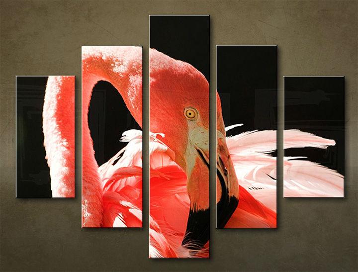 Image of Obraz na stenu 5 dielny ZVIERATÁ ZWI_0009_5EL (obraz na plátne)