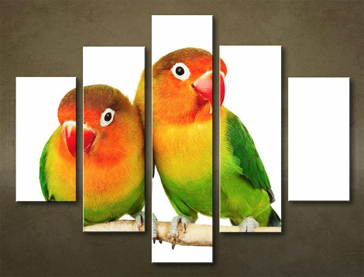 Image of Obraz na stenu 5 dielny ZVIERATÁ ZWI_00104_5EL (obraz na plátne)