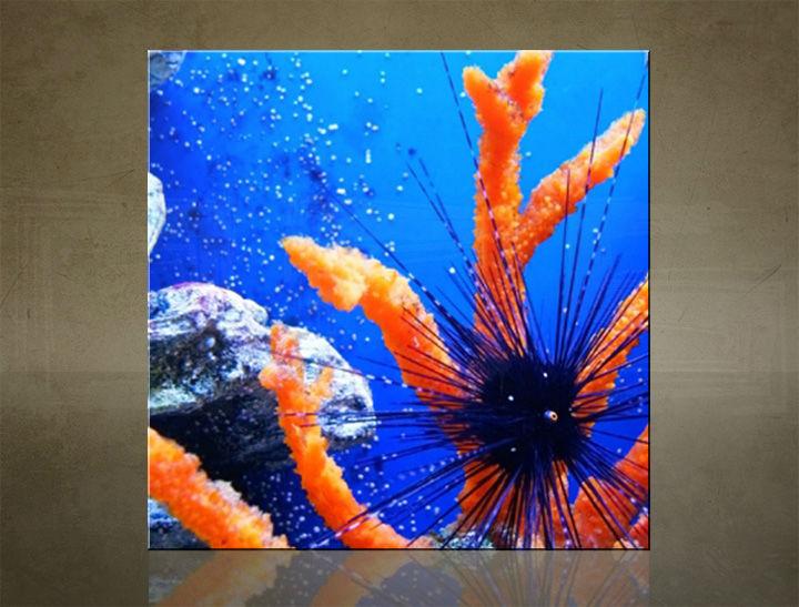Obraz na stenu ŠTVOREC ZVIERATÁ - AHD25605