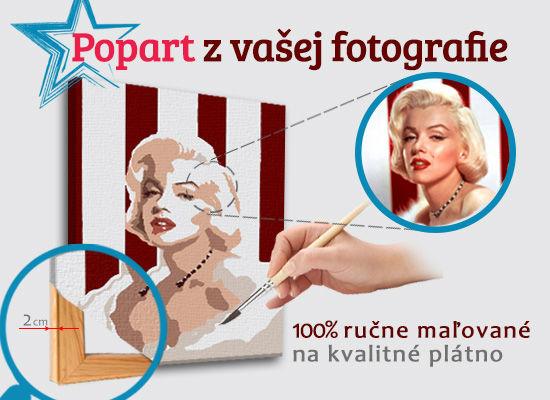 Maľovaný POP Art obraz z fotografie - ŠTVOREC FOTO-POPS (Obraz z fotografie)
