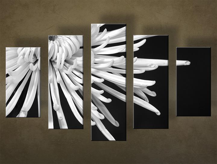 Image of Obraz na stenu Zľava 40 % 5 dielny KVETY 100x70 cm 5KB31//24h
