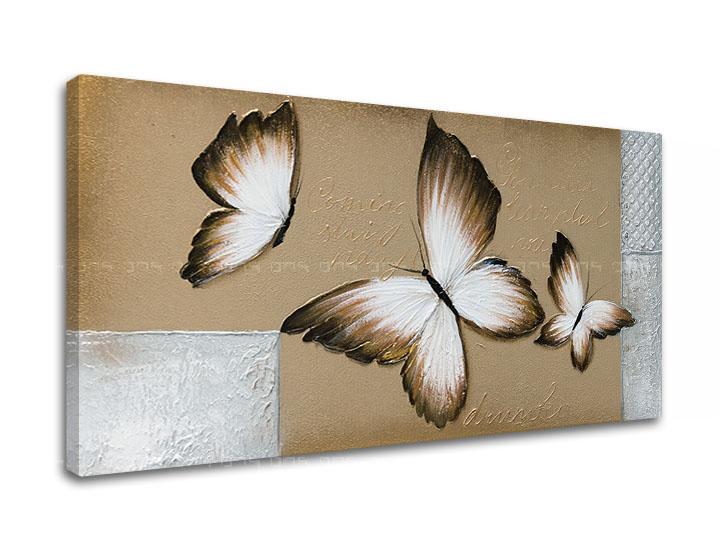 Obraz na plátne MOTÝLE 1 dielny XOBDO155D1 (Kolekcia obrazov LIPA)